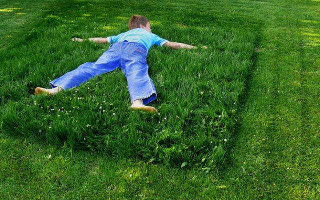 Gartengestaltung Naturnah: 10 Tipps