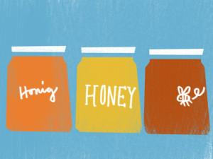 Honig ist nicht vegan