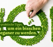Tipps um ein bisschen veganer vegan