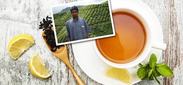 Tee aus fairem Handel