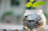 Studie: Investoren bevorzugen nachhaltige Anlagestrategien