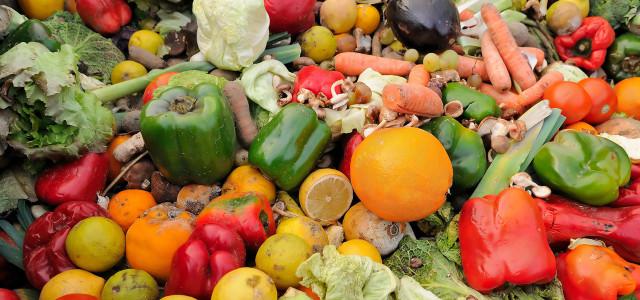 Der WWF hat eine Petition gegen Lebensmittelverschwendung gestartet