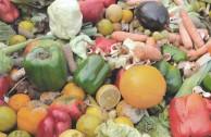 Politiker fordern Wegwerf-Verbot für deutsche Supermärkte