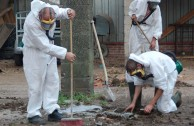 TV-Tipp: Giftmüll für den Wohnungsbau – Der Recycling-Skandal