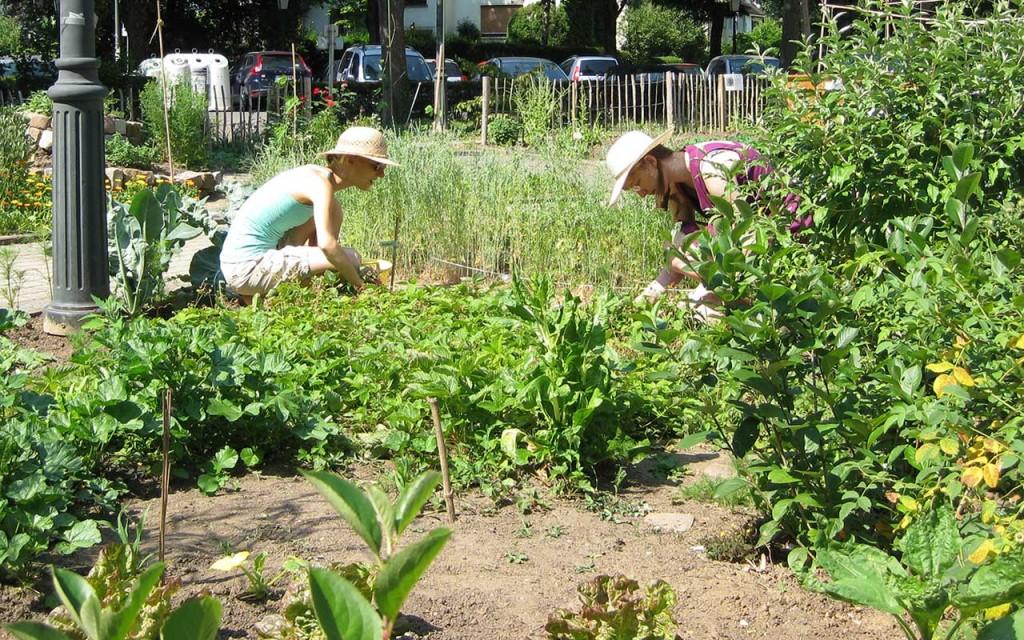 nachhaltig leben: Essbare Städte