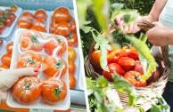 Wert statt Ware: 9 Wege zu besseren Lebensmitteln