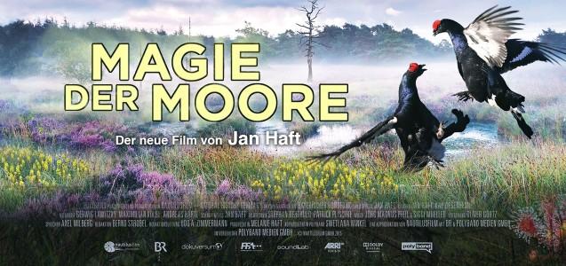 Filmtipp: Die Magie der Moore