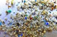 Kalifornien verbietet Mikroplastik in Kosmetikprodukten