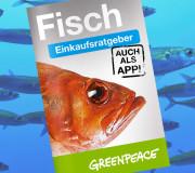Greenpeace Fischratgeber