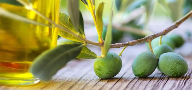 Gutes Olivenöl erkennen: 10 Tipps