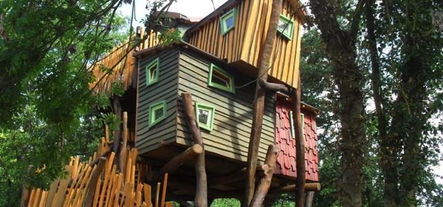 Kulturinsel Einsiedel Baumhaus