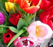 Valentinstag-Tipp: bessere Blumen!