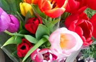 Blumen kaufen mit blütenreinem Gewissen