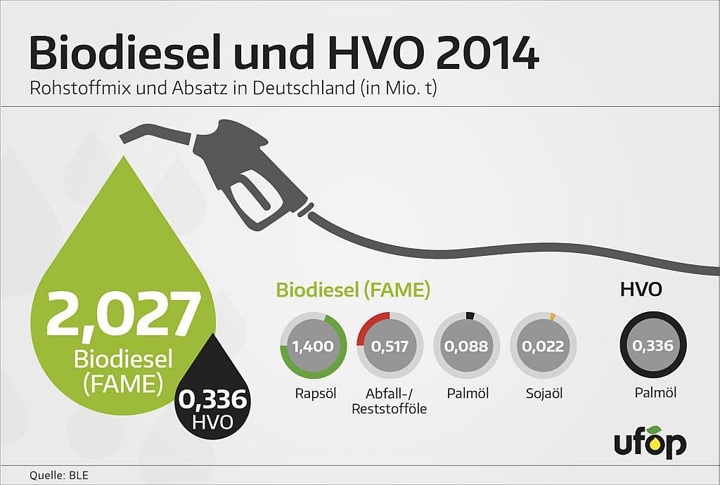 Biokraftstoff aus Palmöl