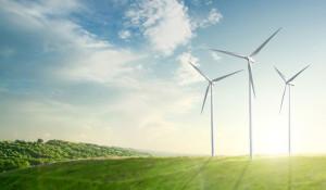 Viele grüne Jobs findet man derzeit in der Windenergie-Branche