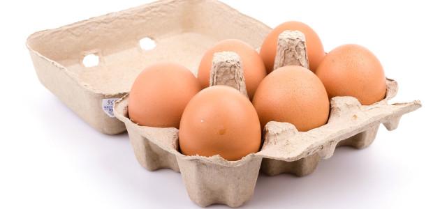 Kaufberatung: Bio-Eier, Freilandeier, Eier aus Bodenhaltung, Eiercode
