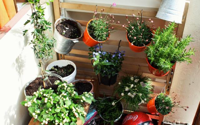 urban gardening kreative ideen f r den gem seanbau auf deinem balkon. Black Bedroom Furniture Sets. Home Design Ideas