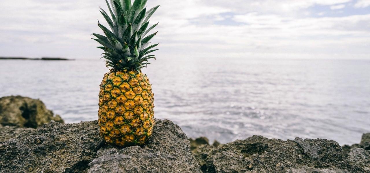 Ananasleder: günstig, vegan und nachhaltig