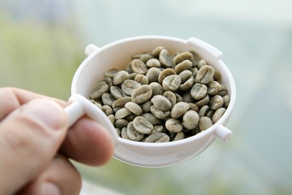 Gruene Kaffeebohnen specialty coffee direkt trade