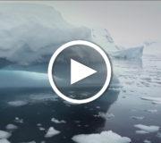 "Projekt ""Iceberg Songs"" gegen den Klimawandel"