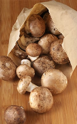 Lebensmittel richtig lagern: Champignons in Papiertüten aufbewahren