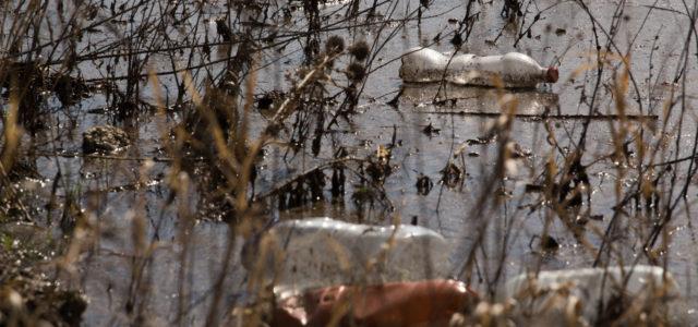 Plastikmüll in deutschen Gewässern