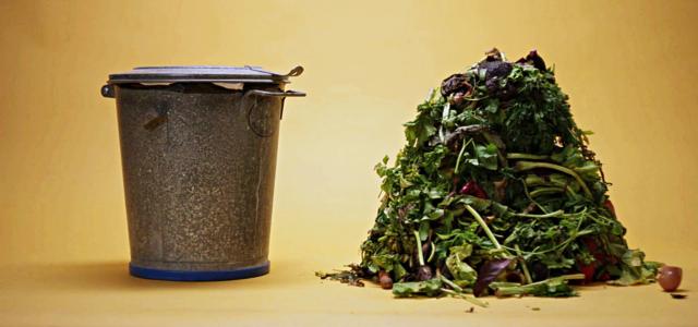 WormUp Kompost statt Biomüll in der Tonne
