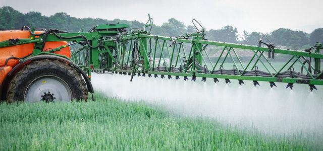 Glyphosat & Roundup: umstrittene Unkrautvernichtugnsmittel