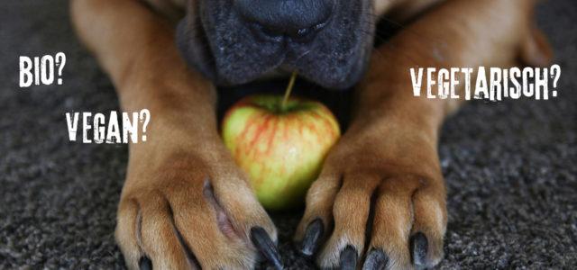 Tierfutter: Hundefutter und Katzenfutter bio, vegetarisch oder vegan.