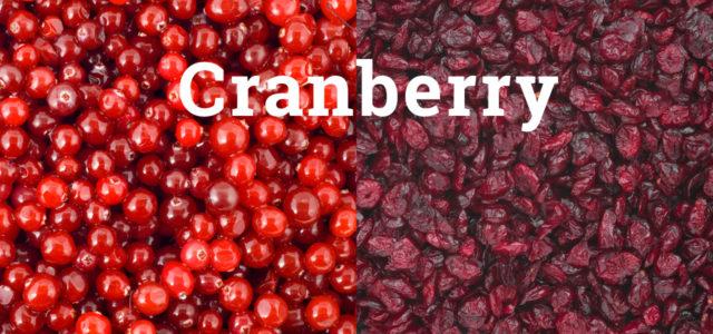 Cranberry: Wunderbeere mit Fragezeichen