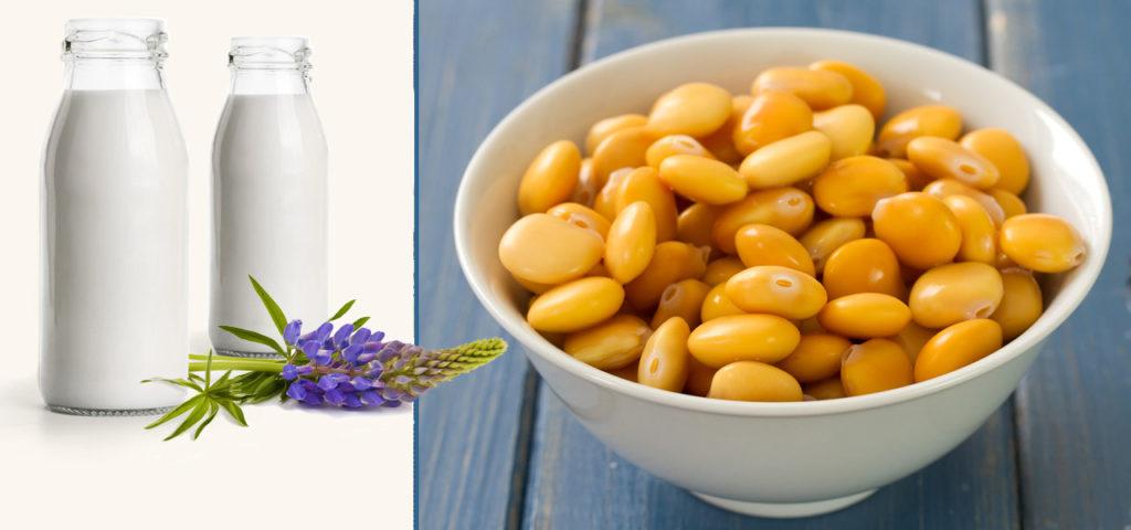 Lupinenmilch Milchersatz, vegan leben