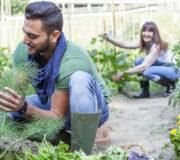 nachhaltig leben: so überzeugst du deine Freunde
