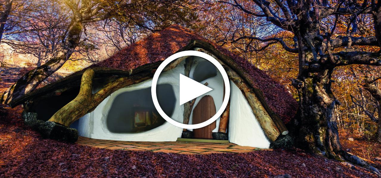in sterreich entsteht ein hobbithaus aus nur einem baum. Black Bedroom Furniture Sets. Home Design Ideas