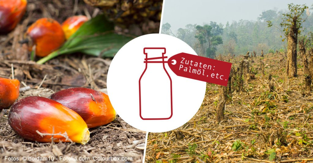 Palmöl App