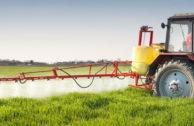 """Greenpeace: """"Pestizid-Standards der Supermärkte sind zu lasch"""""""