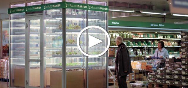 Supermarkt baut Essen selbst an
