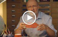 Video: Ist vegane Ernährung Unsinn?