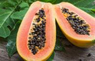 Papaya, die tropische Frucht mit durchschlagender Heilwirkung?