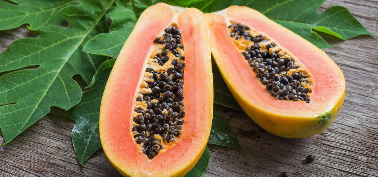 Süße Früchte Papaya Melonenbaum