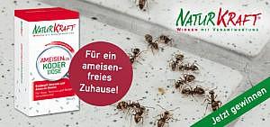 Mit NaturKraft ameisenfrei im Haus, auf Terrasse und Balkon