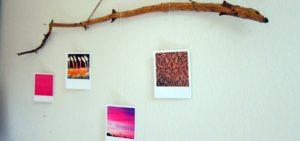 Geschenke basteln: Ast-Galerie für Fotos und Postkarten