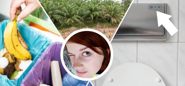 Öko-Irrtümer: Regenwaldzerstörung, Bioplastik, Wasser sparen, Palmöl