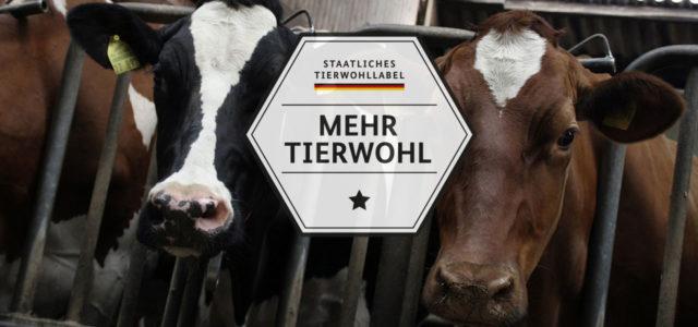 Staatliches Tierwohllabel BMEL