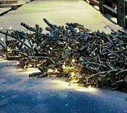 Weihnachtsbaum-Alternativen