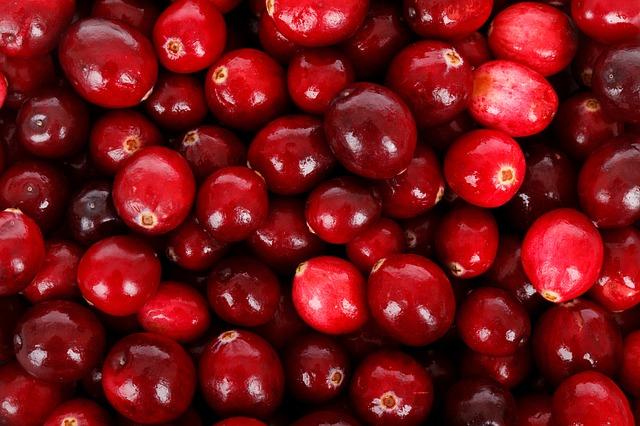 Dank Nährstoffgehalt auf der Superfood-Liste, wegen Nachhaltigkeit aber eher auszulisten: Cranberry