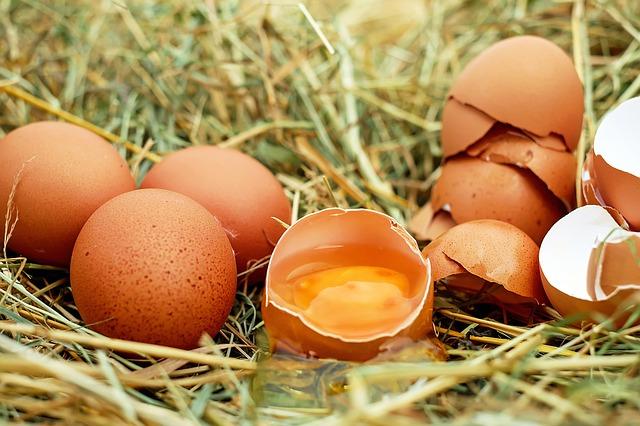Vitamine: Hühnereier und Eierschalen