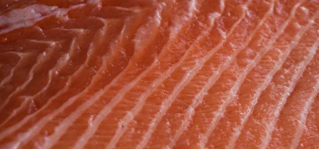 Greenpeace: Gift in Fisch aus Aquakultur