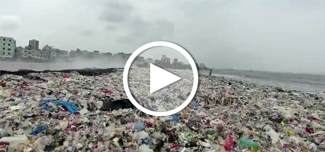 Plastikmüll: Putzaktion in Mumbai