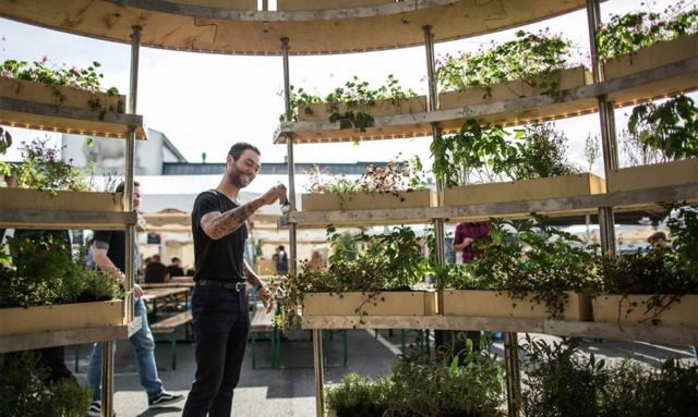 The Growroom: Ikeas Selbstversorger-garten - Utopia.de Selbstversorger Garten Anlegen Obst Gemuse