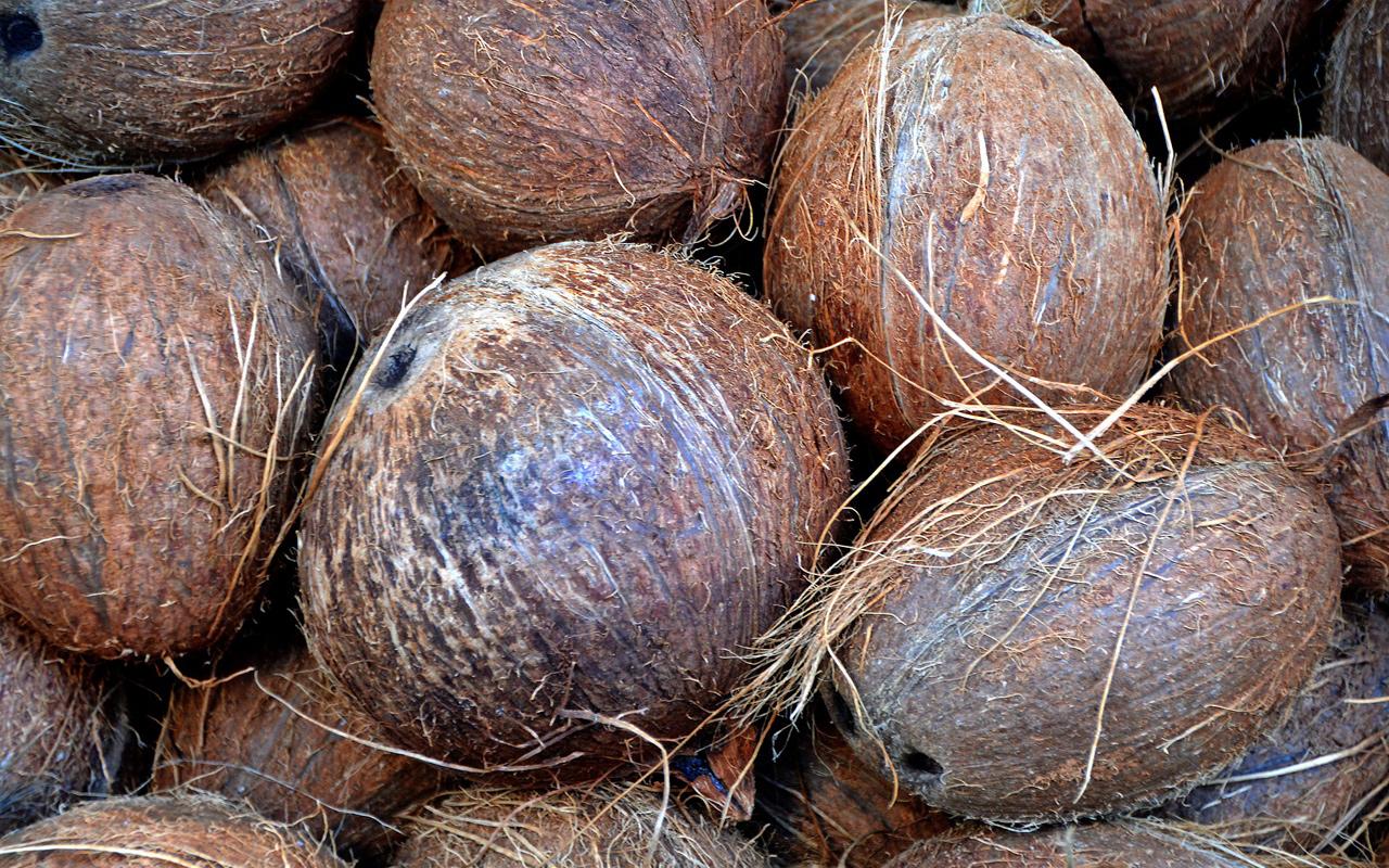 Kokosnuss Ist Das Superfood Wirklich So Gesund